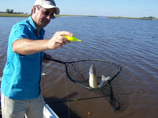 Qu significa so ar con pescar sue o significado for Que significa estanque